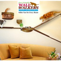 Wall Walkers cat habitat